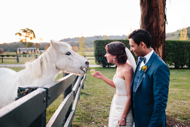 Philippa & Anurag's Bendooley Estate Wedding, Berrima